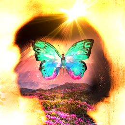 Wendy De Rosa – Energy Healing for Empaths and Intuitives A Virtual Retreat session2
